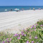 spiagge_Costa Selvaggia