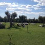 L_Incontro_giardino
