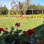 Costa-appartamnenti_giardino