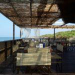 La_Pineta_Blu _Dog_Beach_tende_vento