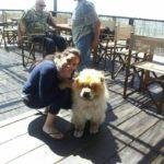 La_Pineta_Blu _Dog_Beach_dog