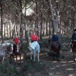 Ruben-Ranch-Montalto-di-Castro
