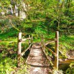 Selva-del-Lamone _ponte_di_legno