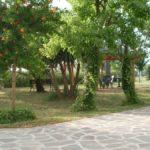 Verde_Oasi_Pescia_Romana